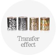 transfer_effect.jpg